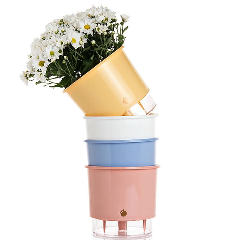 Vasos Autoirrigáveis rosa