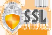 https://cdn.awsli.com.br/336/336790/arquivos/SSL-blindado180x120.png