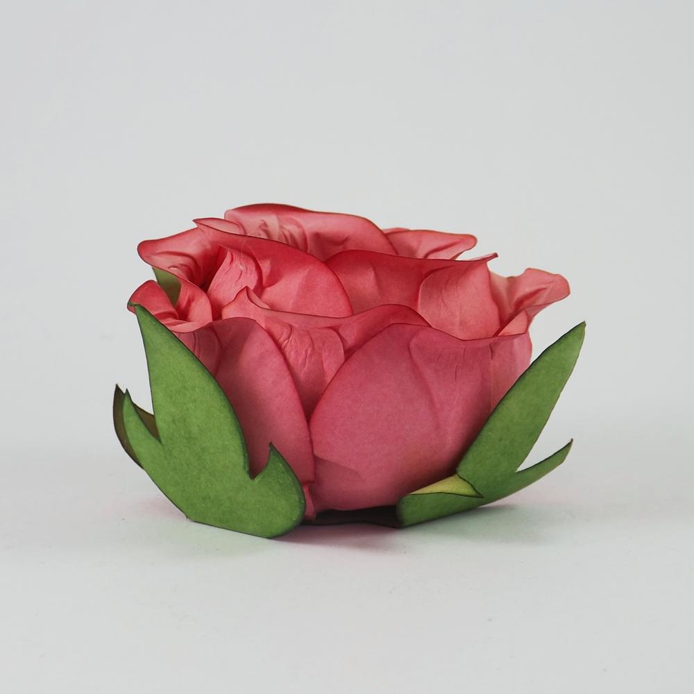 forminha-botao-de-rosa-coral
