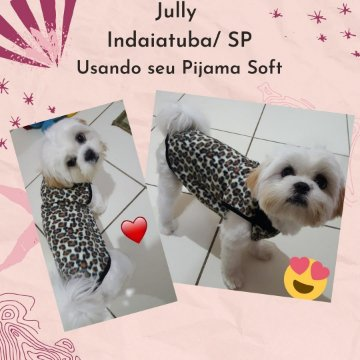 Jully Indaiatuba SP