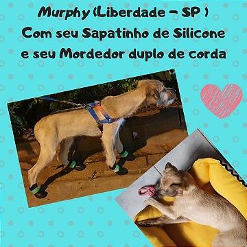 Murphy Liberdade / SP