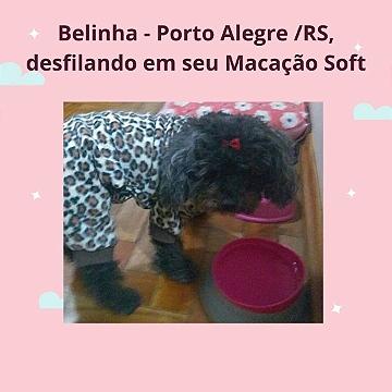 Belinha Porto Alegre/RS
