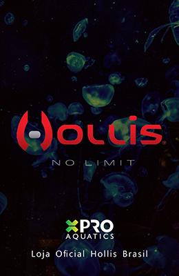 banner_distribuidor_oficial_hollis