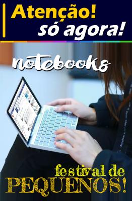 NOTEBOOKS PEQUENOS