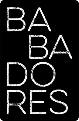 BANNER LATERAL BABADORES