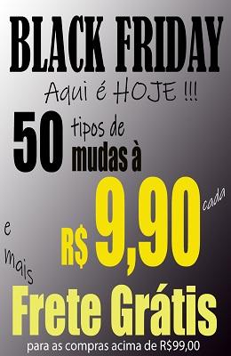frete gratis 990