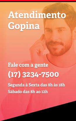 Atendimento Gopina (17) 3234-7500