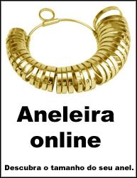 Aneleira