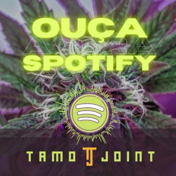 Ganja Playlist Spotify TamoJoint