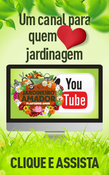 Jardineiro Amador Youtube