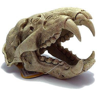 DUPLICADO - Enfeite de Aquário Soma Esqueleto de Cabeça de Crocodilo P 054100