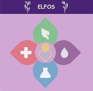 doTERRA - Elfos - bem estar com óleos essenciais