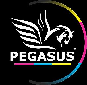 Pegasus Informatica