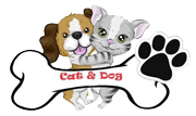 Cat & Dog Pet Shop