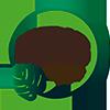 Indoor Plantas