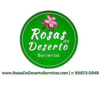 Rosas do Deserto Barreiras