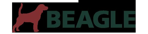 Vista Beagle