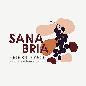 Carlos Junior Sanabria Da Rosa
