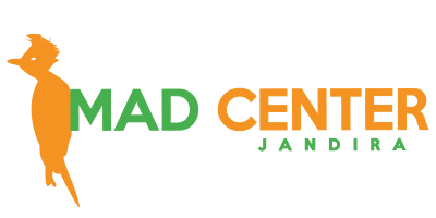 MAD CENTER COMERCIO DE MADEIRAS LTDA