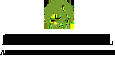 HUTAN BRASIL