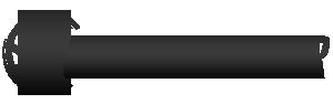 Global Server