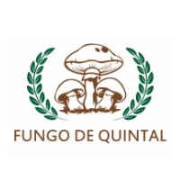 Fungo de Quintal
