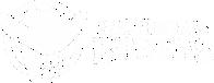 Indiretas Brutas | Camisetas e Bonés com Frases Country, Frases Sertaneja