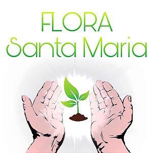 FLORA SANTA MARIA