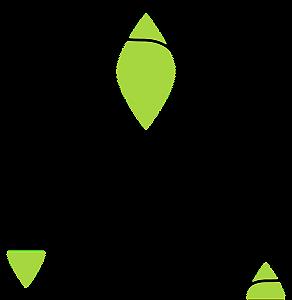 Ana Vegana - Plant Based