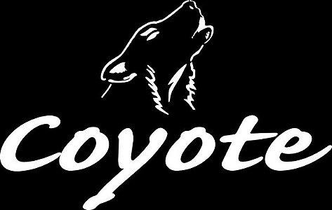 Óculos Coyote