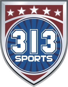 313 SPORTS BRASIL