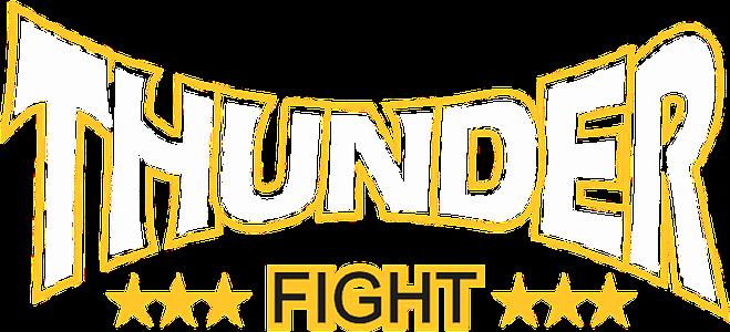 Thunder Fight Store