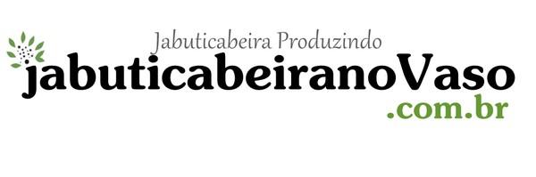 Jabuticabeira no Vaso