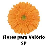 Coroa de Flores para Velório Todo Brasil