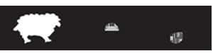 7956690 - Feltran Feltros Industriais
