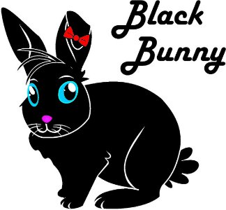 Black Bunny Store