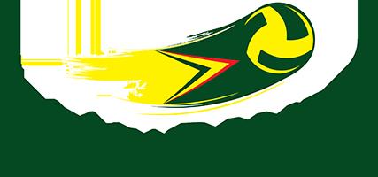 Associação Volei Bauru