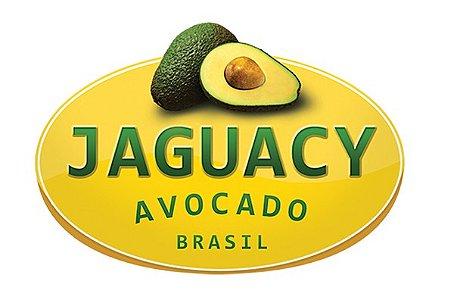 Avocado Jaguacy