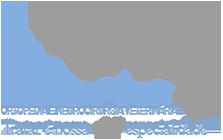 ÍCONE Ortopedia Veterinária