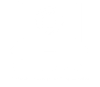 NetImport