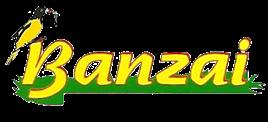 Banzai Floricultura