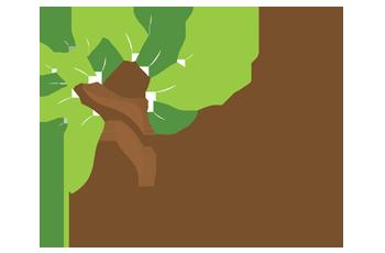 Bio Equilibrium