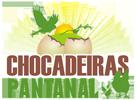 Chocadeiras Pantanal