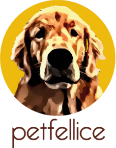 PetFellice