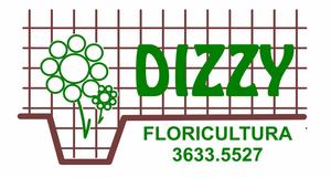 Dizzy Floricultura