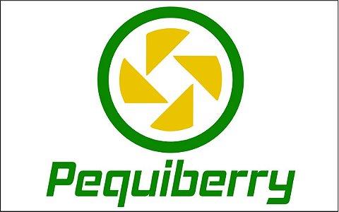 PEQUIBERRY COMPONENTES ELETRONICOS