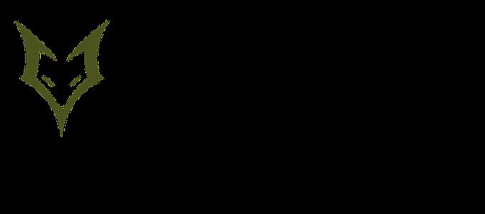 FoxBravo Esportes