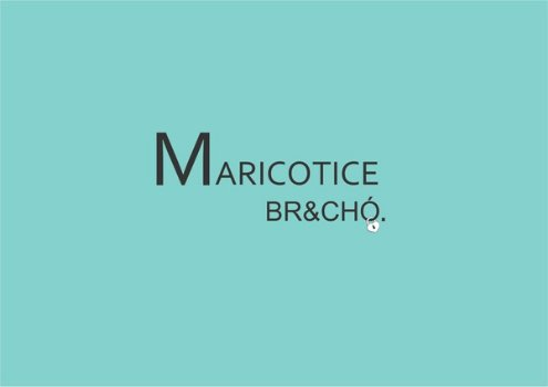 Maricotice Brechó