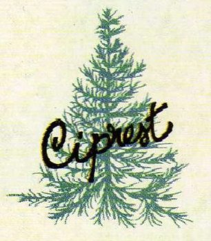 ciprest.com - Loja Online da Ciprest