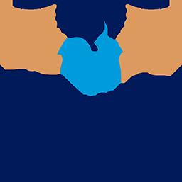 VISUAL TRACIOS